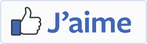 bouton-aime-facebook-protection-auditive-sur-mesure-Nice-Paris